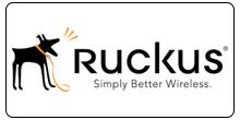Ruckus Wireless, Inc.